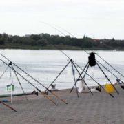 Grillfisch angeln - so beißen Raubfische