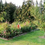 Gartenarbeiten im Spätsommer