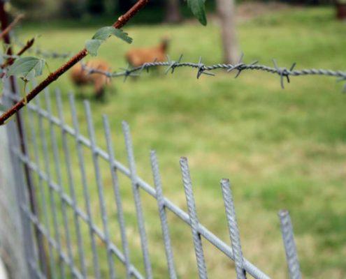 Neuer Zaun für den Garten
