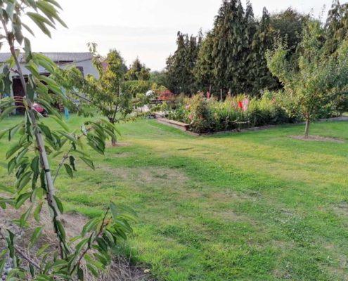 Wie findet man Grundstücke mit großem Garten?