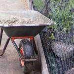 Welches Gartenwerkzeug braucht man