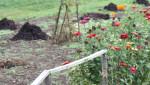Komposter im Garten anlegen