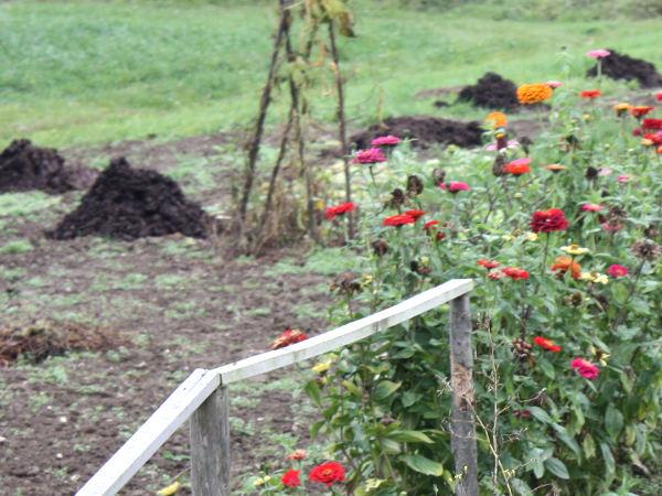 Komposter im Garten