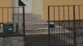 Zaun und Gartentor streichen
