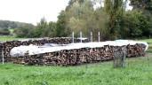 Holz richtig einlagern