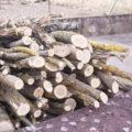 Heizholz im Garten