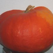 Gartenkürbis ca. 3 kg schwer